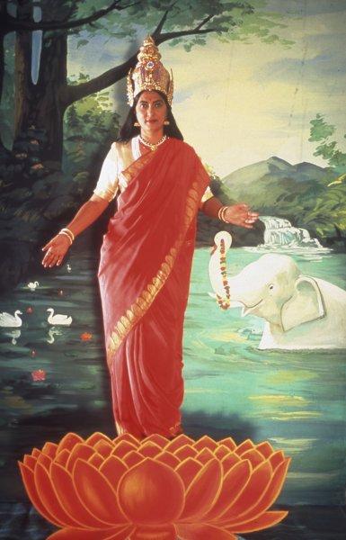 Pushpamala N. The Native Types - Lakshmi