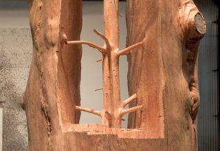 Giuseppe Penone sculptures, @rijksmuseum gardens
