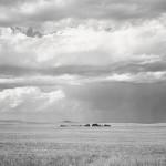 Robert Adams - Ranch Northeast of Keota, Colorado, 1969