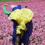 Viviane Sassen, In Bloom, 2011